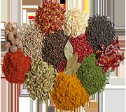 Spices / Herbs / Masalas